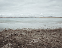 Element·Lakeside