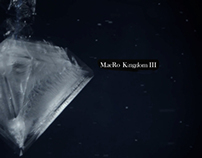 Macro Kingdom III