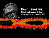 Brain Tsunamis Media Metaphor