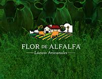 Flor de Alfalfa