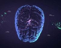 CARMEN Neuroscience platform