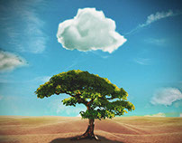 Everything Grows with the Cloud