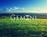 Gemini Laboratories