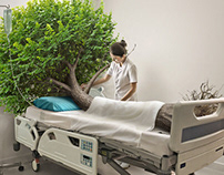Tree - Creative Retouch