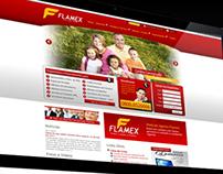 WebDesign do Site da Financeira Flamex