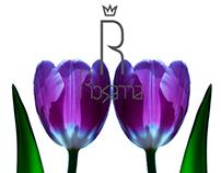 Rosanna brand