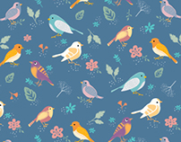 Pássaros da sala