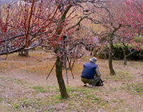 Plum Blossoms, 2006