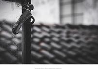Terracota Roof´s Portfolio