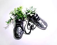 Urban Shoe Pots