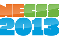 NECSS 2013 / Concept & Implementation