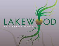 Lakewood Alliance Financial Report