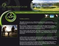 Te Nahu Lovell & Co Web Design