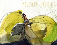 Moleskine #3