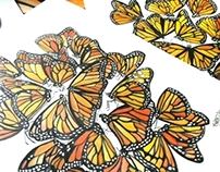 Monarch Butterfly's Watercolor