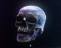 Glitch Art Style Skull
