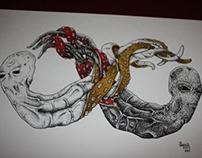 Clash of the Krakens