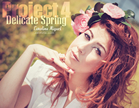 PROJECT 4 - Delicate Spring