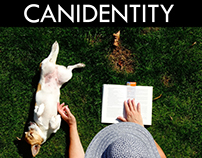 CANIDENTITY: Showing off my design by using dogs.