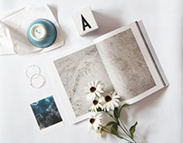 Photographic Portfolio // Instagram &  Still Life