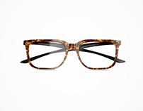 Eye Glass Visualization