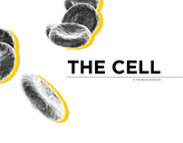 TimeLife - The Cell