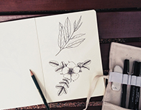 Floral and botanical pen drawings