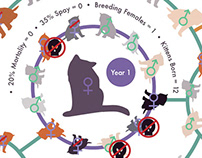 Infographic of One Cat: Unspayed