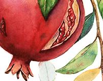 Bird with pomegranates