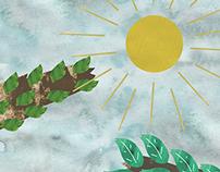 Animation 3 : The Sun