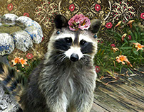 Shapata The Raccoon