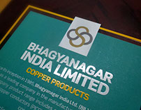 Brchure - Bhagyanagar India Ltd