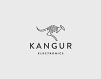 KANGUR Electronics