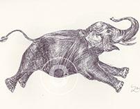 BALLPEN ELEPHANTS