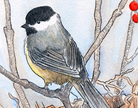 Card Illustration: Mama Chickadee