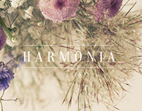 Harmonie . Manoel Bernardes