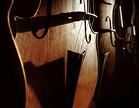 Violon scene