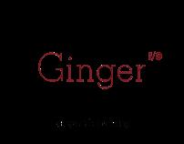 Ginger io Branding