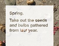 Take out the seeds and bulbs gathered from last year.