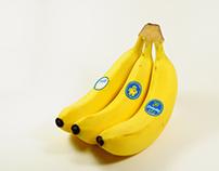 Chiquita Banana Sticker Contest Winner
