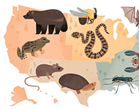 Endangered Species of the US