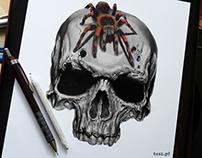 Spider of death