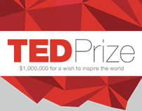 The TED Prize