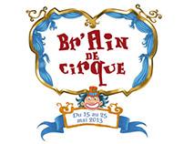 Br'Ain de cirque 2013 (French circus festival)