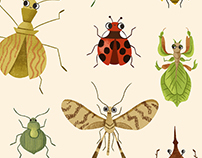 Encyclopédie des insectes