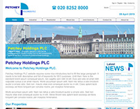 Petchey Holdings Website: Design Build and Brand