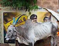 Bangalore Posters