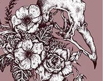 sparrow & anemone