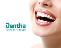 Dentha Dentistry Szeged website 2013-2014