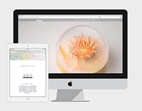 WEB | 光作室LightStudio-燈藝設計